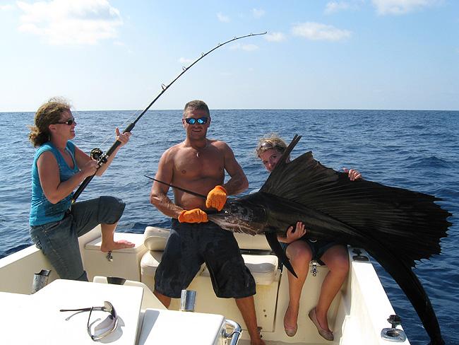 sailfish-double