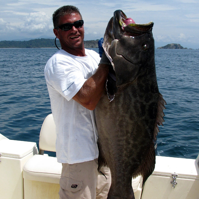 costa rica bottom fishing grouper